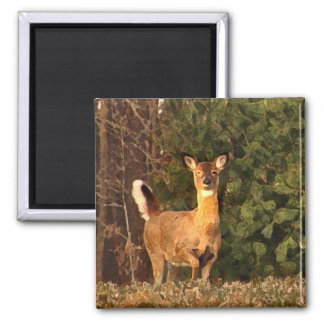 Deer at Sunrise 2 Inch Square Magnet