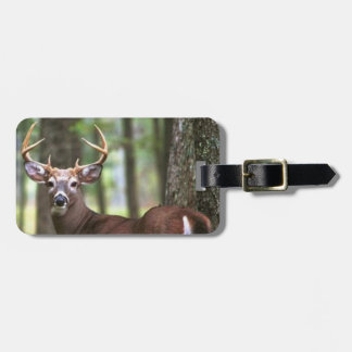 deer bag tag hunters bag tag