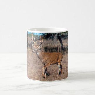 Deer Buck Coffee Mug
