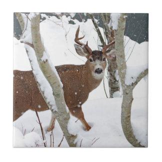 Deer Buck in Snow in Winter Ceramic Tiles