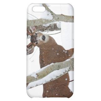 Deer Buck in Snow in Winter iPhone 5C Covers