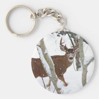 Deer Buck in Snow in Winter Keychains