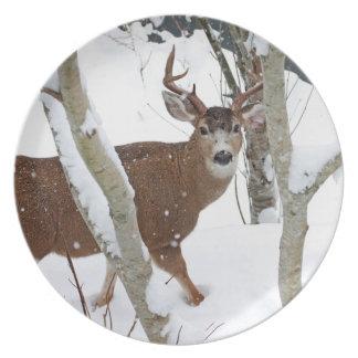 Deer Buck in Snow in Winter Plate
