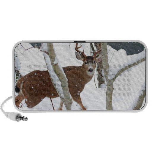 Deer Buck in Snow iPod Speakers