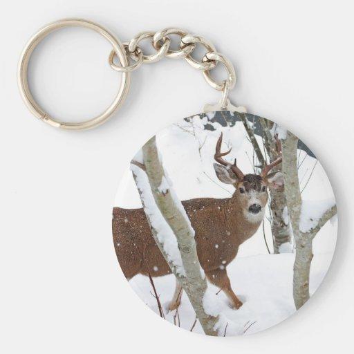 Deer Buck in Snow Keychains