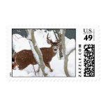 Deer Buck in Snow Postage