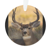 deer buck ornament
