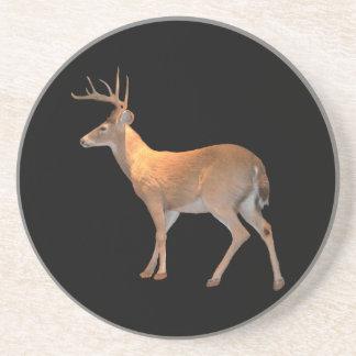 Deer (Buck) White-Tailed Drink Coaster