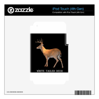 Deer (Buck) White-Tailed iPod Touch 4G Skins