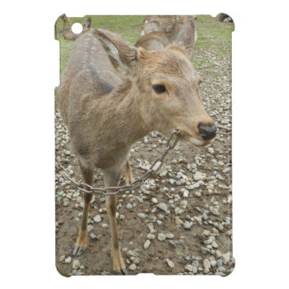 Deer chewing a chain case for the iPad mini