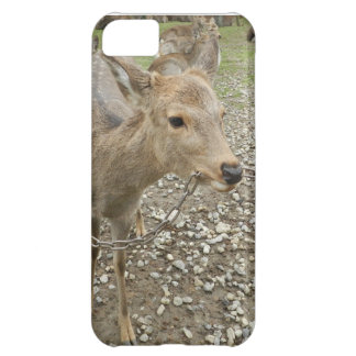 Deer chewing a chain cover for iPhone 5C