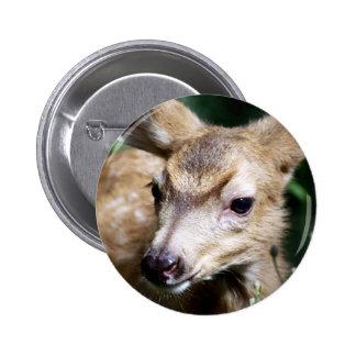 Deer Closeup Button