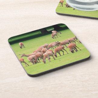 Deer Cork Coaster