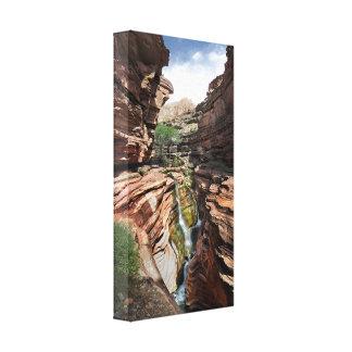 Deer Creek Narrows Waterfalls 2 - Grand Canyon Canvas Print