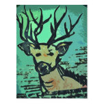 Deer deer motive postcard