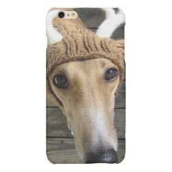 Case Savvy iPhone 6 Plus Glossy Finish Case with Greyhound Phone Cases design