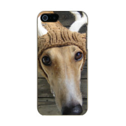 Incipio Feather Shine iPhone 5/5s Case with Greyhound Phone Cases design