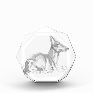 Deer Drawing Acrylic Award