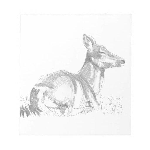 Deer Drawing Memo Pad