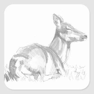 Deer Drawing Square Sticker