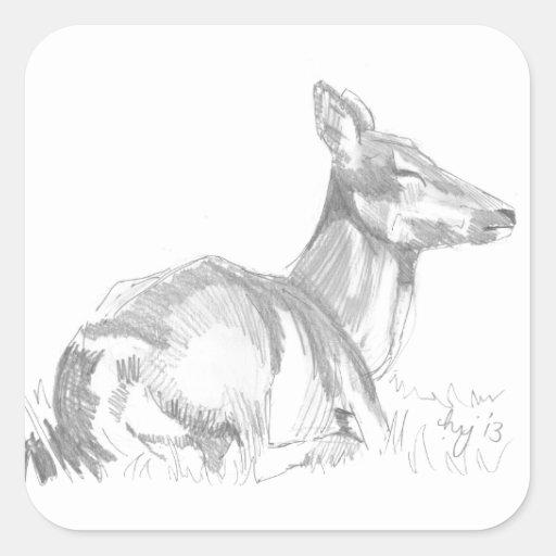 Deer Drawing Square Sticker