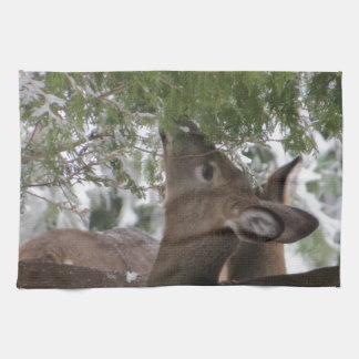 Deer Eating Cedar Branches Kitchen Towel