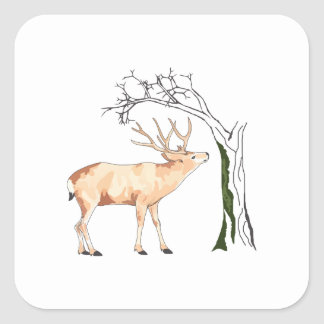 DEER EATING MOSS SQUARE STICKER