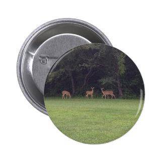 Deer Family Button