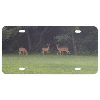 Deer Family License Plate