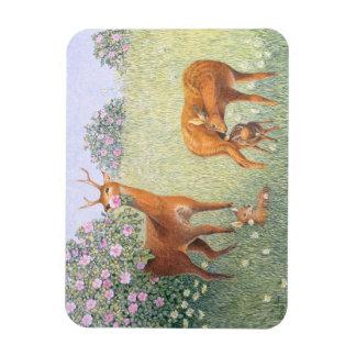 Deer Family Magnet
