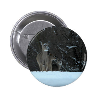 Deer Family Pinback Button