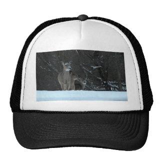 Deer Family Trucker Hats