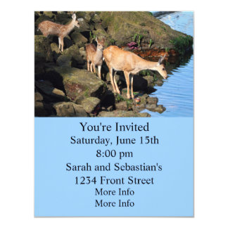 Deer Family with Twin Fawns by the Ocean Card