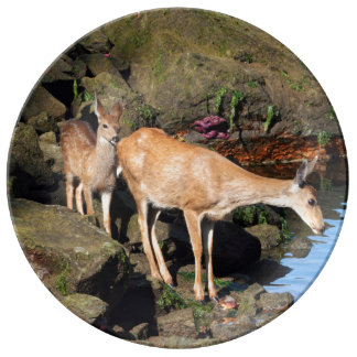 Deer Family with Twin Fawns by the Ocean Porcelain Plate