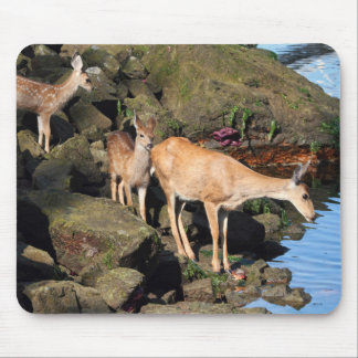 Deer Family with Twin Fawns by the Ocean Mouse Pad
