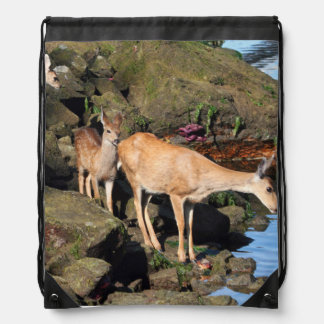 Deer Family with Twin Fawns by the Ocean Cinch Bag
