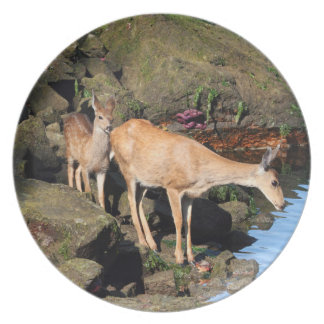 Deer Family with Twin Fawns by the Ocean Plates