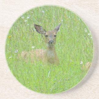 Deer Fawn Art Coaster