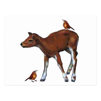 Deer, Fawn & Birds: Art in Oil Pastel Postcard