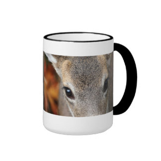 Deer Fawn Closeup Portrait Ringer Mug