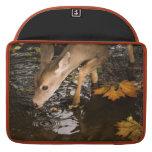 Deer Fawn in a Creek Sleeve For MacBooks