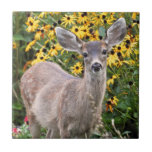 Deer Fawn in Flower Garden Ceramic Tiles