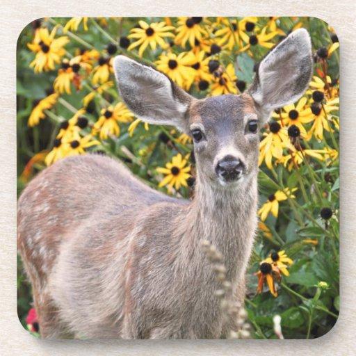 Deer Fawn in Flower Garden Coasters