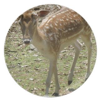 Deer Fawn  Plate