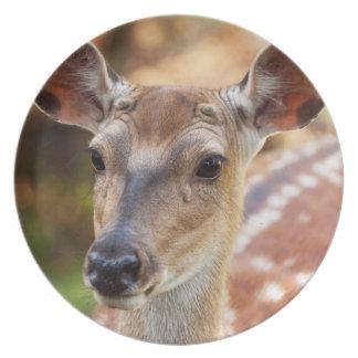 Deer Fawn Portrait Plates