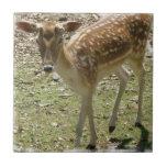 Deer Fawn Tile