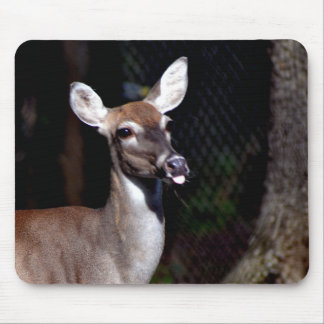 Deer Giving Raspberries Mouse Pad