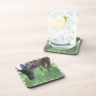 Deer Grazing Cork Coasters