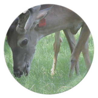 Deer Grazing Plate
