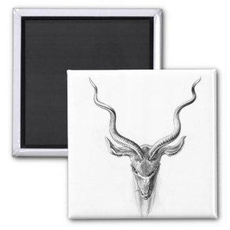 Deer head 2 inch square magnet